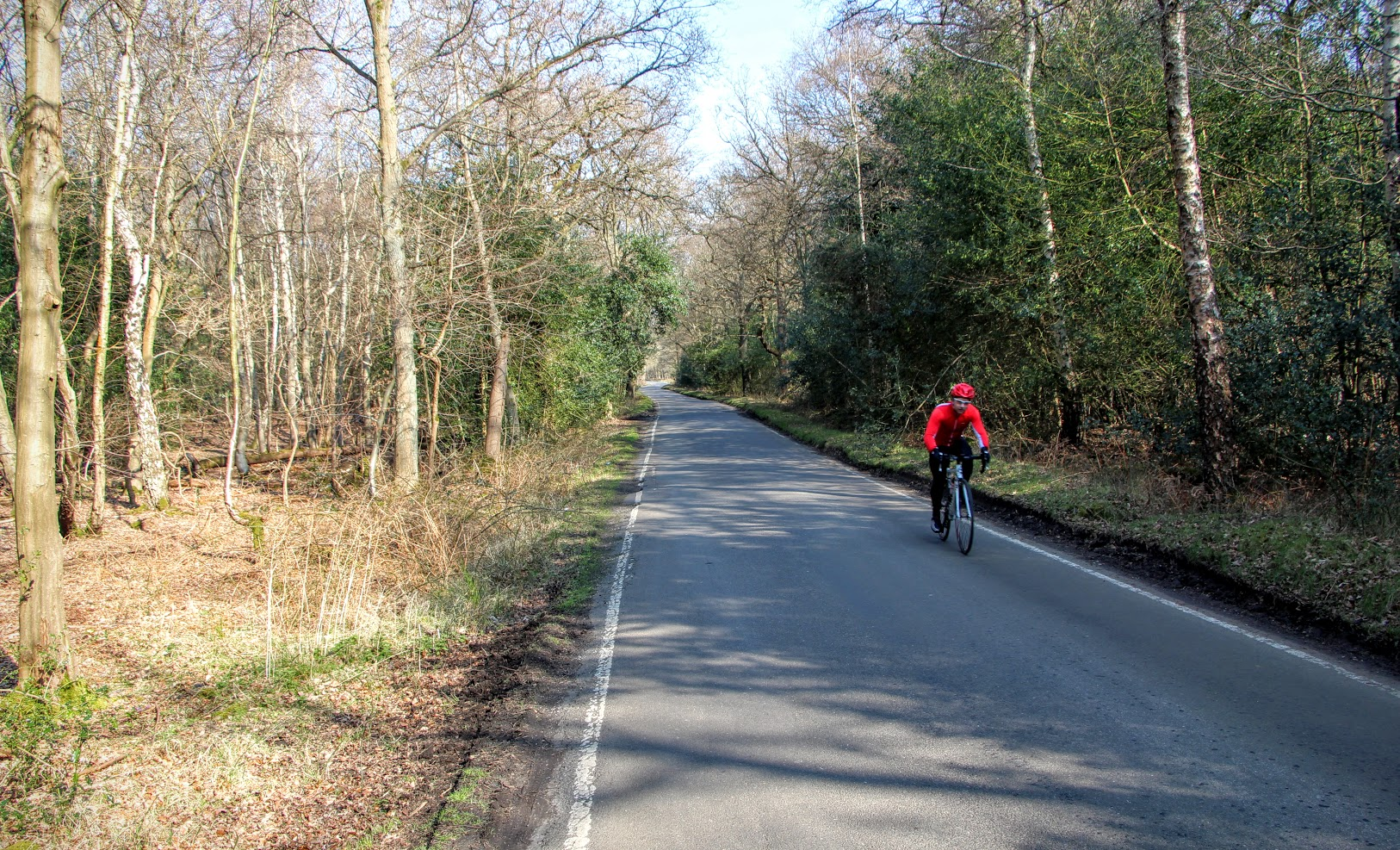 Epping Forest Cycling 6