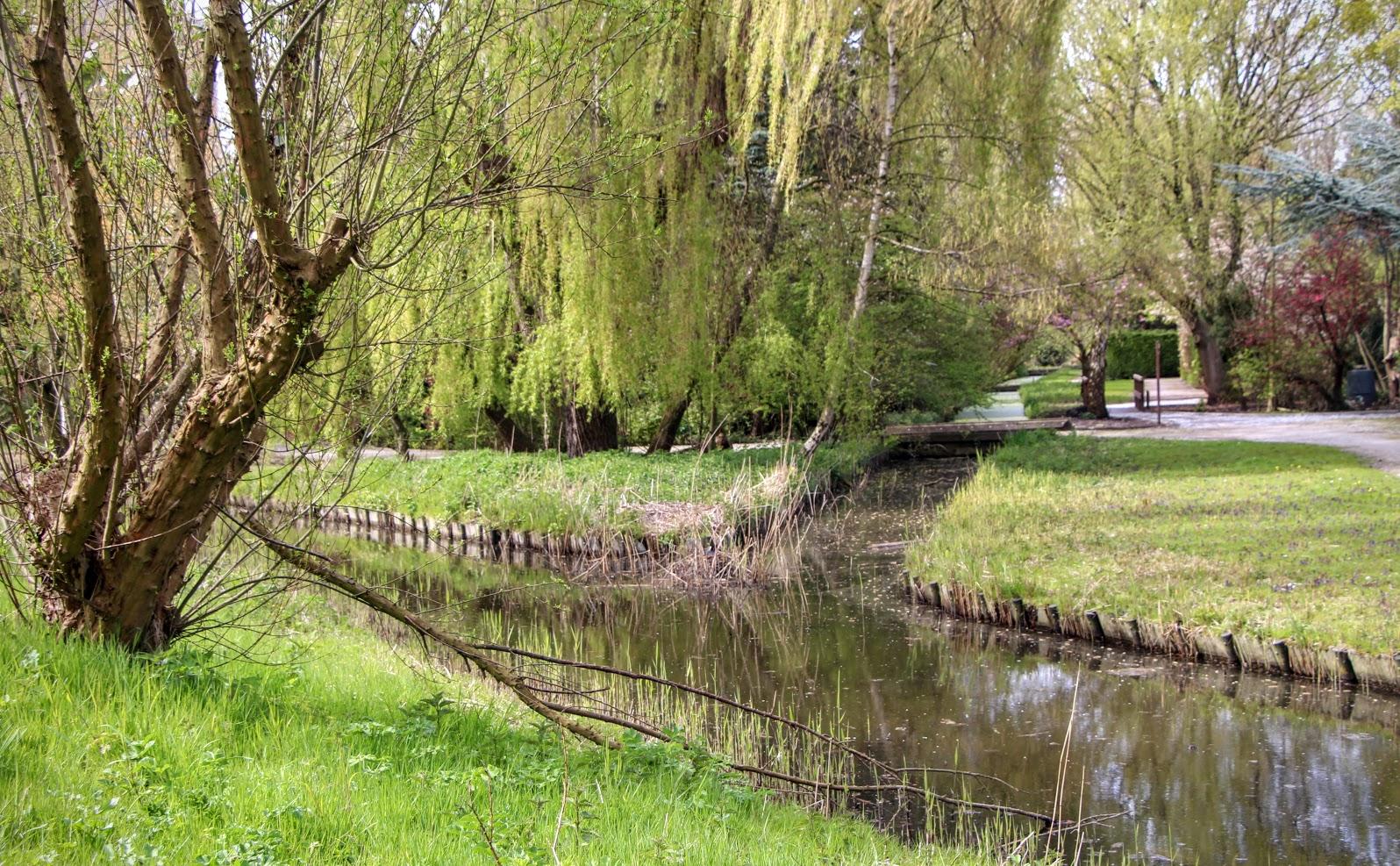 Amsterdam-Park-2