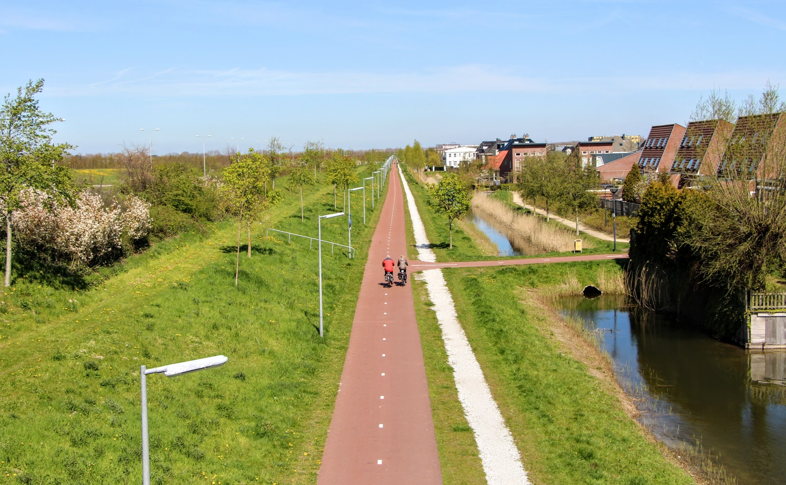 Amsterdam-Tulips-2