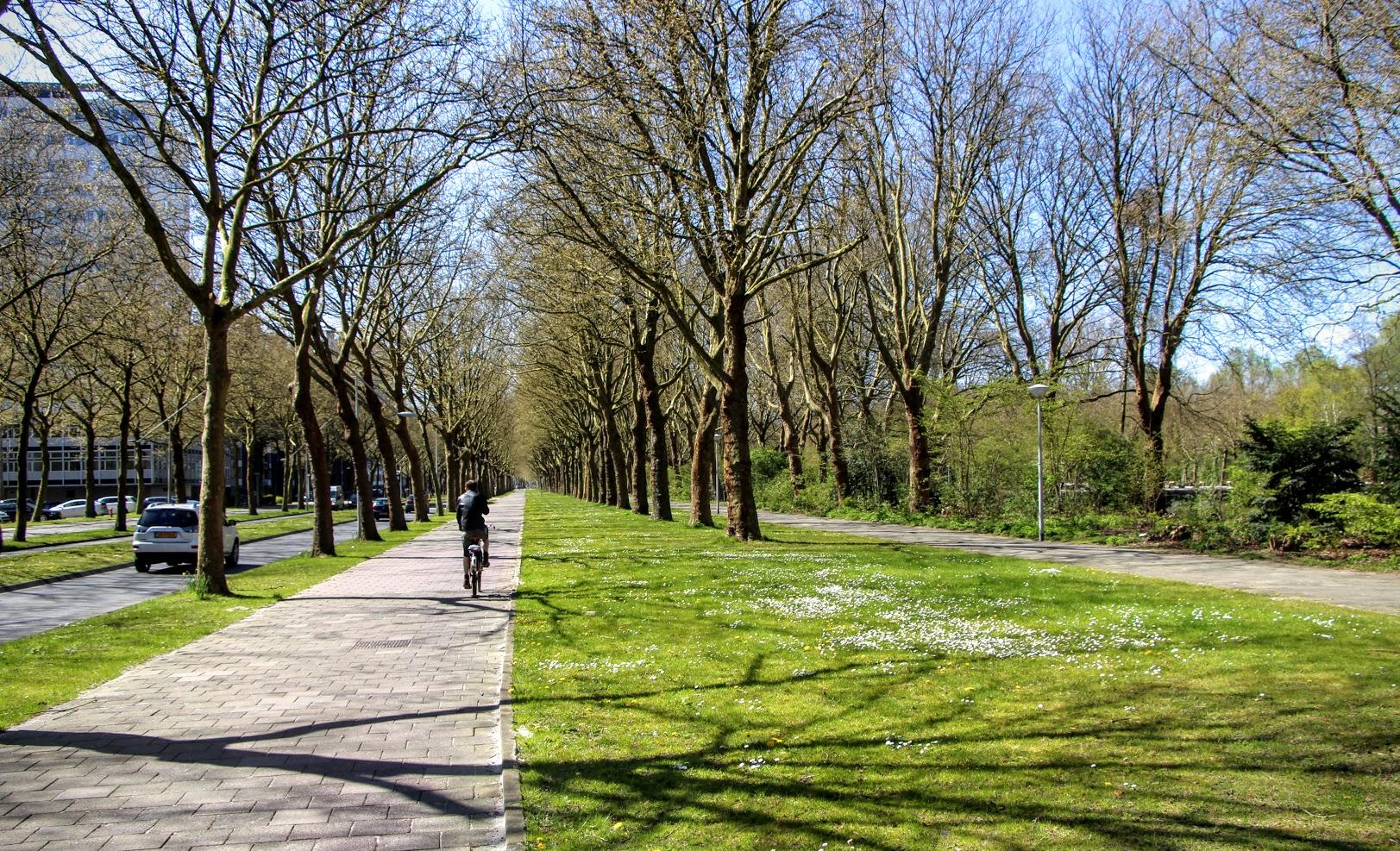 Amsterdamse-Bos-9