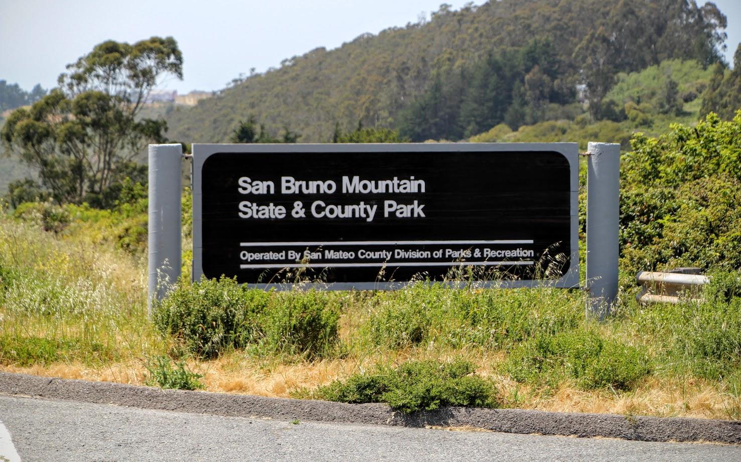 san-bruno-mountain-state-park-5