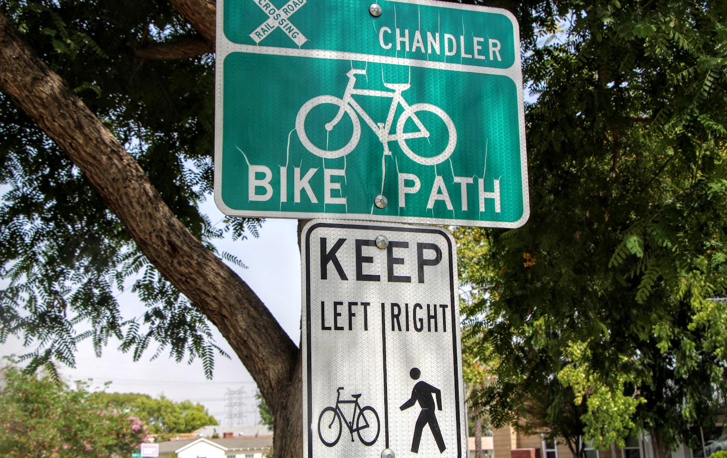 chandler-bike-path-5