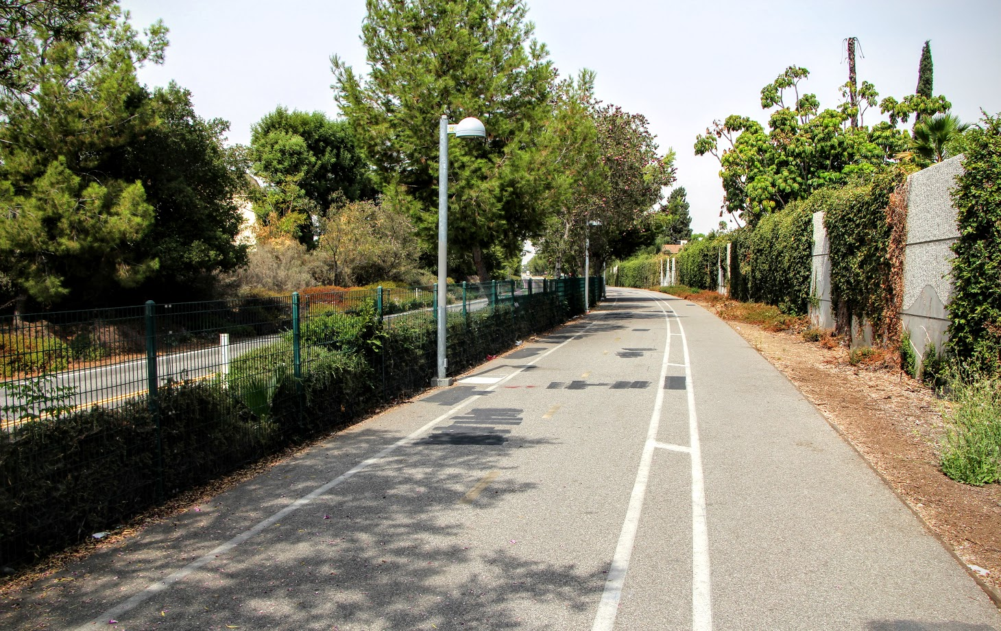 chandler-bike-path-9