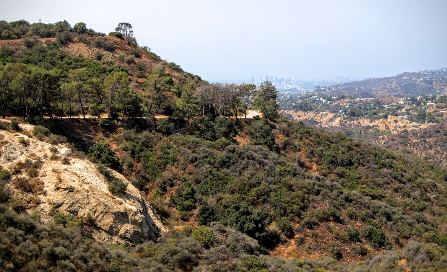 mt-hollywood-trail-6