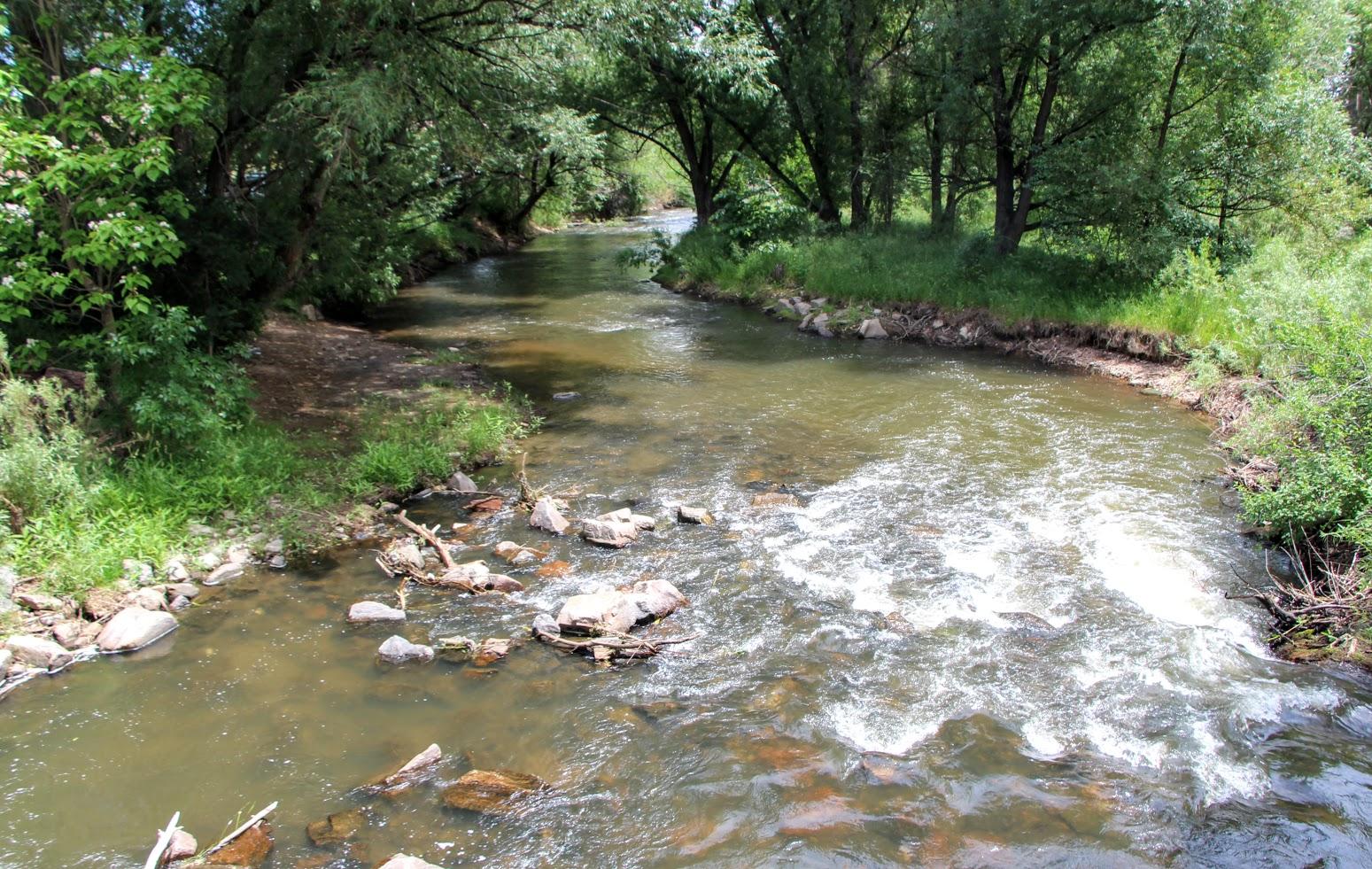 bear-creek-trail-1