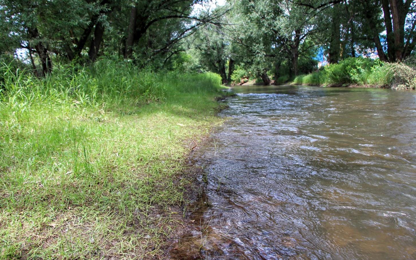 bear-creek-trail-6