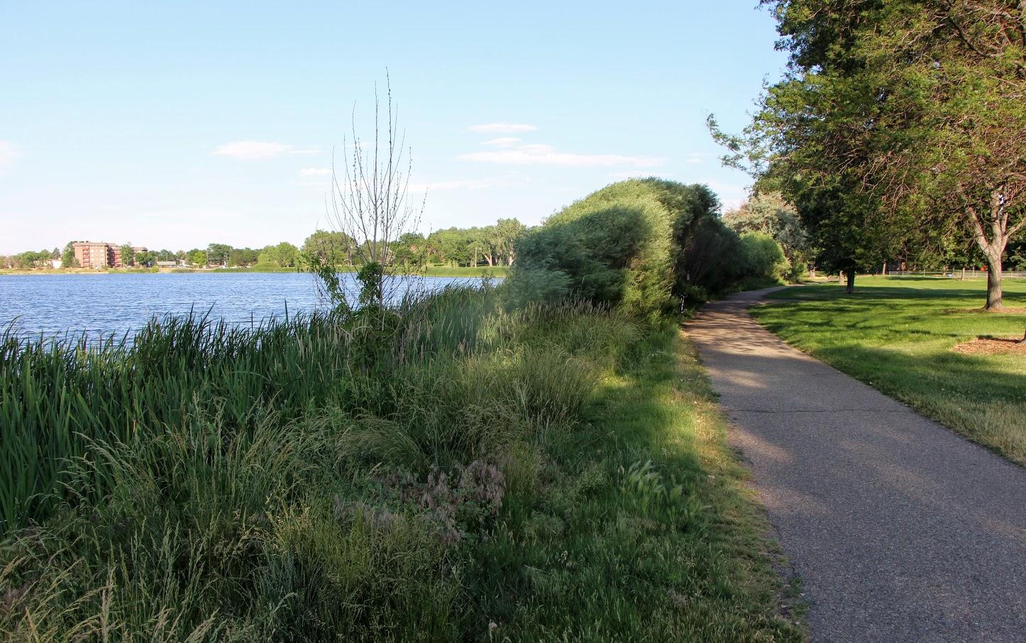 commons-park-8