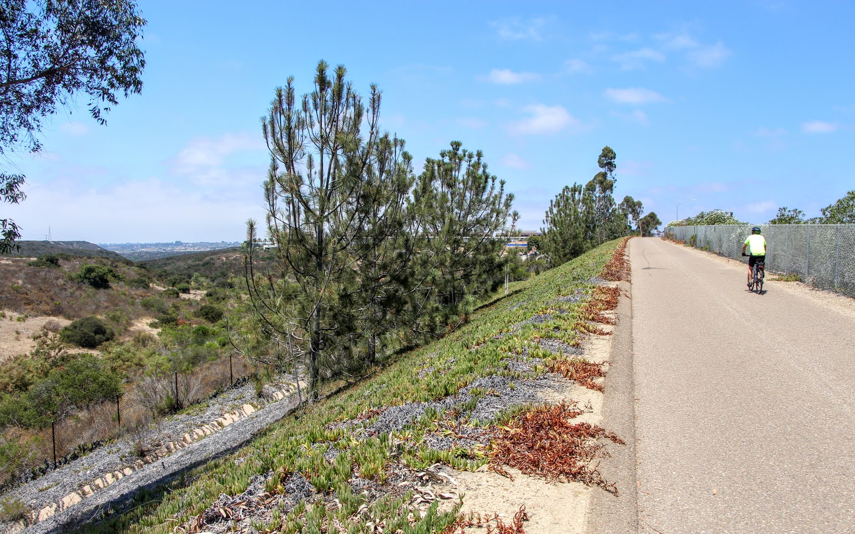 highway-56-bike-path-5