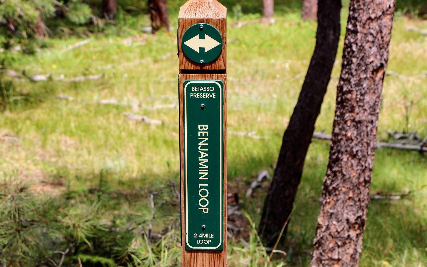 betasso-trail-3