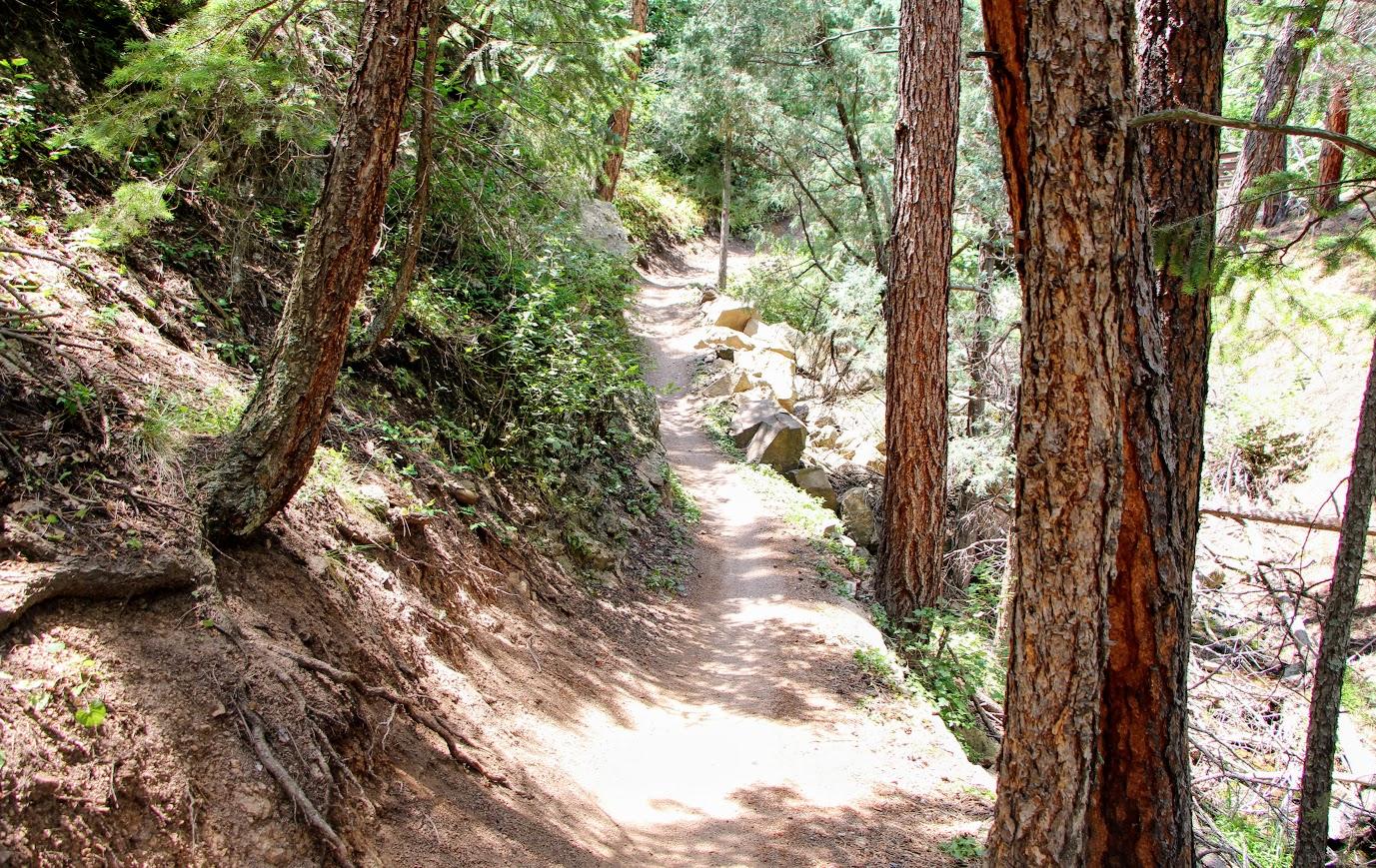 betasso-trail-4