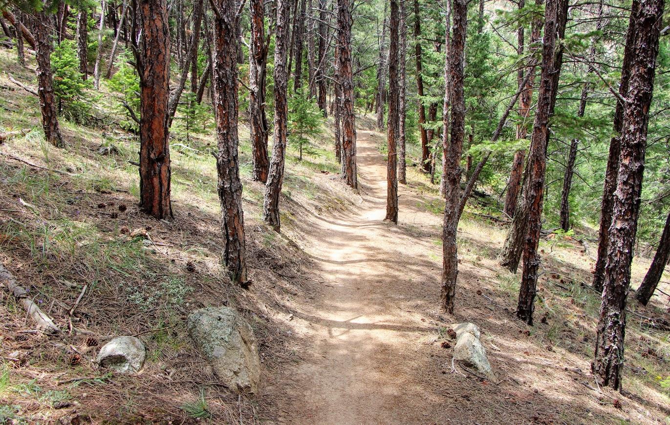 betasso-trail-5