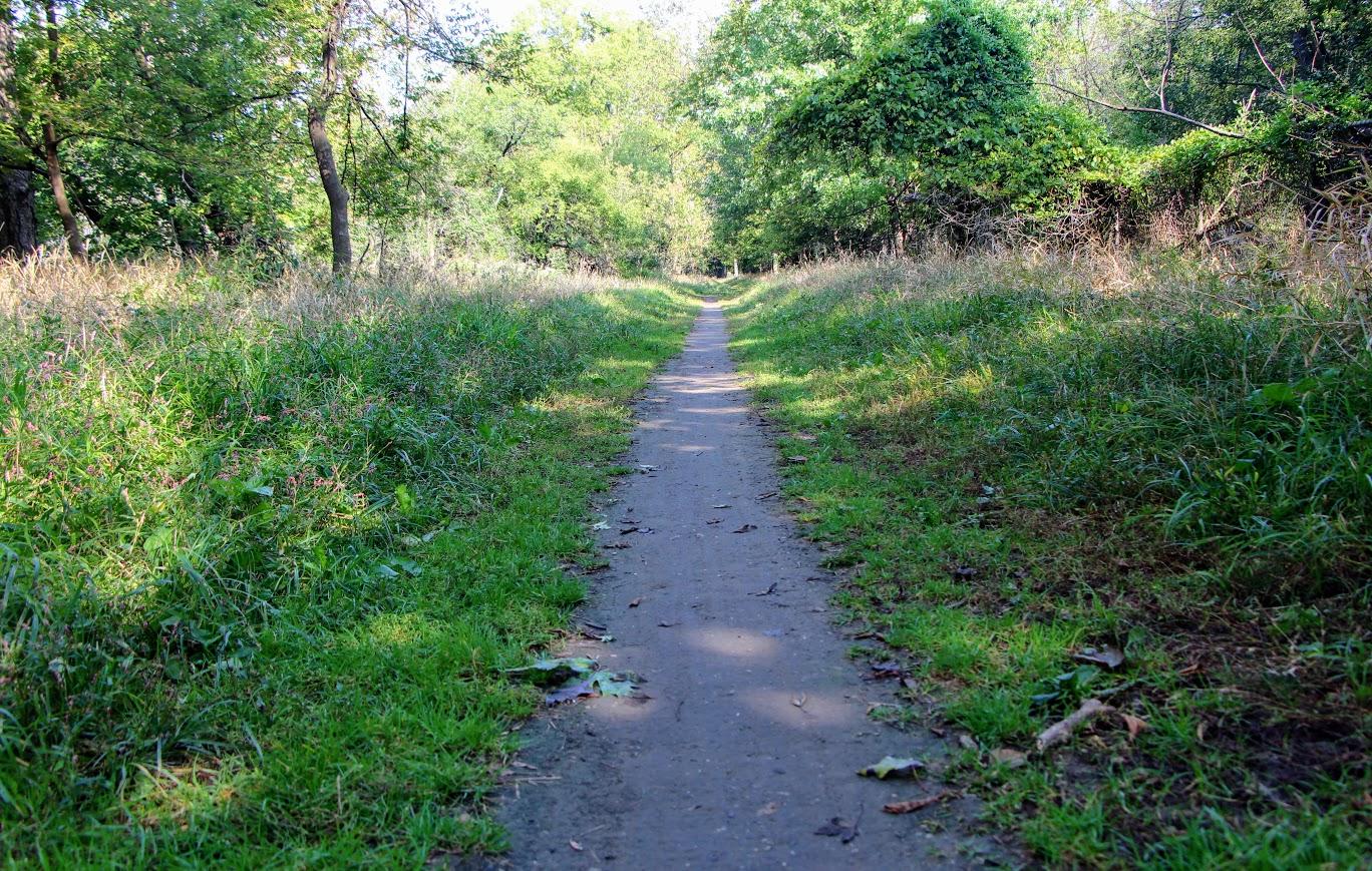 des-plaines-river-trail-6