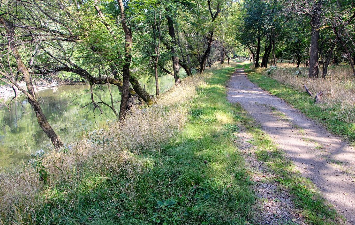 des-plaines-river-trail-9