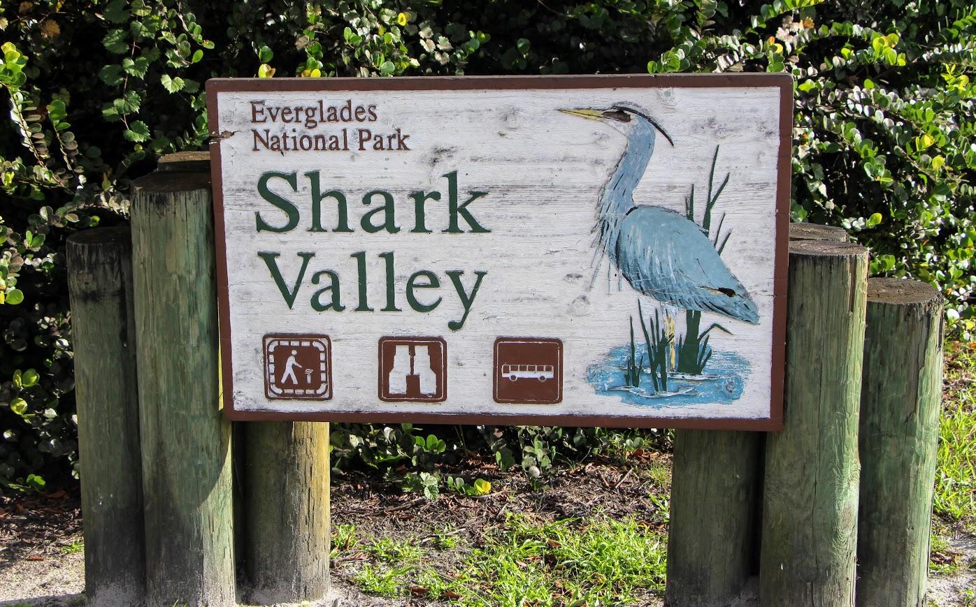 shark-valley-8